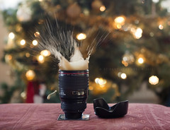 Splash into Christmas... (Stuart Stevenson) Tags: christmas uk light photography scotland mess christmastree drop gift secretsanta present splash fairylights christmastime highiso shortexposure lenshood clydevalley thanksforviewing canon5dmkii stuartstevenson lensmug stuartstevenson winterlens