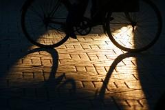 (JoannaKK) Tags: shadow bike marocco marrakech fahrrad marokko schattenspiel