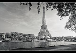 Classic Lady of Paris
