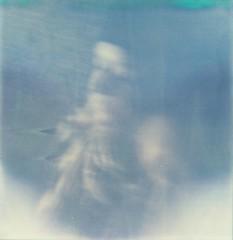barcelonaroid02-ecstasy monica (thewhitestdogalive) Tags: barcelona portrait blur film girl vintage fun lomo bokeh retro analogic pellicola outfocused analogico polaroidlandcamerasupercolor1000 riccardobandieracarbonmadecom riccardobandieraphotography
