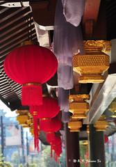 DSC_9450 (JOHNSON_) Tags: china asia shanghai prc     cityview shanghai