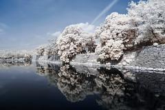 Hiroshima - Hiroshimajyo [Explored] () Tags: japan landscape ir daylight panasonic    hiroshimajyo hiroshimacastle lx3 hiroshimaprefectures