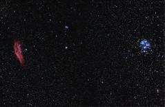 California Nebula and M45 The Pleiades 28 December 2011 (BudgetAstro) Tags: nikond70 astrophotography m45 astronomy taurus sevensisters dss perseus 55200mmf456g ngc1499 thepleiades californianebula deepskystacker Astrometrydotnet:status=solved Astrometrydotnet:version=14400 Astrometrydotnet:id=alpha20111292018917