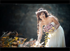 Im falling in love (Roy Media Entertainment - Mr Roy Photographer) Tags: wedding photographer sec secretgarden weddingalbum anhdep nikonvn taduycuong roymedia nhcituytp