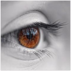 i (Samantha Nicol Art Photography) Tags: iris brown white black colour macro eye art square nikon dof lashes bokeh samantha pupil popping nicol