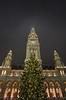 Vienna City Hall (Mike G. K.) Tags: vienna christmas mist building tree fog architecture night lights austria cityhall gothic towers symmetry townhall rathaus ringstrasse wein mikegk:gettyimages=submitted