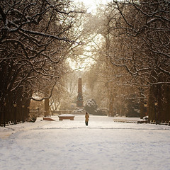 Alley Of Light (Philipp Klinger Photography) Tags: park schnee trees winter light shadow people woman sun sunlight sno
