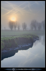 Misty Pollard Willows Sunrise (Erroba (feeling very sick)) Tags: trees mist fog sunrise canon belgium belgique belgi erlend muizen 24105mm 60d erroba robaye