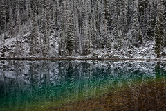 Early Snow at Lake O'Hara in Yoho National Park (Lee Rentz) Tags: morning autumn trees wild cliff lake snow canada color colour fall nature water forest reflections landscape outside reflecting early waiting quiet peace natural outdoor snowy britishcolumbia peaceful surface reflected shore northamerica snowfall yoho conifer lakeohara canadianrockies yohonationalpark subalpine canadabritishcolumbia lakeoharalodge