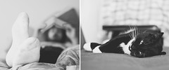 161/365. The men (again) (n.white1) Tags: people blackandwhite bw pet monochrome animal cat person 50mm diptych dof bokeh human 365 humanoid day161 shallowdof project365 365days hopefullywewillgettoseeeachotheragaininfebruary