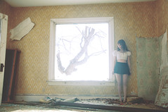 (yyellowbird) Tags: winter wallpaper house selfportrait tree abandoned window girl yellow illinois big cari rockford