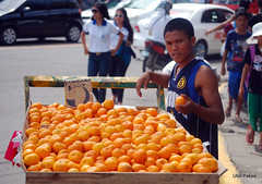 The orange seller (ubo_pakes) Tags: street city portrait people orange man fruits fruit nikon asia display sale philippines environmental cebu vendor oranges cart cebucity selling visayas sinulog ponkan pushcart d60 mandarijnen ubo pakes earthasia mygearandme mygearandmepremium