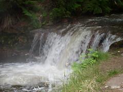 Kerosene Creek (bob_katt) Tags: newzealand lake hot water pool creek canon river bush rotorua natural northisland aotearoa kerosene 500d waikite