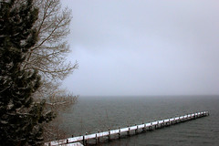 Snowy Pier (San Francisco Gal) Tags: cloud lake snow tree nature water canon january laketahoe deciduous 2012 jeffreypine