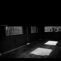 - shadows in the hallway (Chez C. - buzy) Tags: park roof light shadow abstract tourism beautiful garden hongkong pagoda scenery lotus details pillar chinese olympus destination dynasty tang nunnery chilin motives  nanliang   epl2
