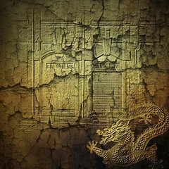 The past (jaci XIII) Tags: china texture textura arquitetura architecture dragon fantasy fantasia drago decrepitude