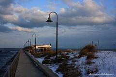 Il mare d'inverno (Annamaria  Colaccino) Tags: winter sea landscape mare neve inverno ravenna maredinverno casalborsetti spiaggiainnevata nevemare annamariacolaccino neve2012ravenna