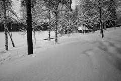 (eeviko) Tags: trees winter bw white snow black finland river landscape grey frozen scenery hut finnish northkarelia easternfinland canoneos450d 2612012