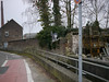 Reiher in der Stadt 09.02.2012