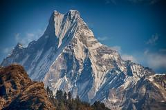 Machapuchare mountain, Annapurna, Nepal (CamelKW) Tags: nepal trekking annapurna himalayas machapuchare poonhilltrek machapucharemountain himalayastrekking