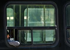 'Enroute' (Canadapt) Tags: toronto man window tram transit passenger streetcar enroute canadapt