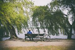 der frhe Radler hat die Bank (redstarpictures) Tags: park summer lake river germany deutschland see cyclist hamburg bank cycle fluss alster fahrrad aussenalster stgeorg radler alsterlake alsterpark outeralsterlake parnkbank