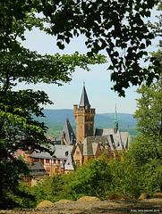 Schloss Wernigerode im Frhjahr 2016 (jmwr1971) Tags: wood trees forest germany spring view schloss wald bume harz ausblick frhling aussichtspunkt wernigerode sachsenanhalt harzer schlos schlosswernigerode agnesberg wandernadel