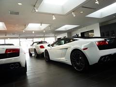 Lamborghini Gallardos (Chance Hales) Tags: white continental spyder motors lamborghini bentley symbolic gallardo gtc bicolore lp5604 lp5502