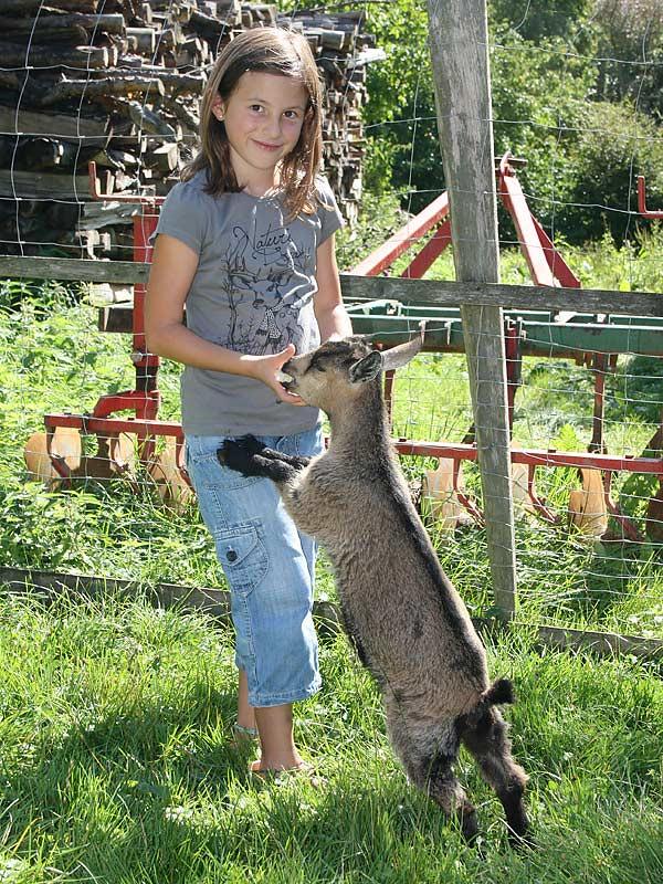 Lindenhof Hausmann - Mädchen beim Ziege füttern