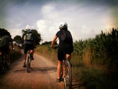Como en un bello sueo (Markus' Sperling) Tags: travel mountain cicloturismo bike bicycle rural camino path dream bicicleta ciclismo ciclista velo fahrrad sueo ciclist