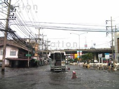 Thaifloods_20053025-low