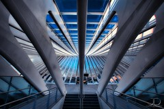 Spaceship - Lige Guillemins (JD Photographie.) Tags: santiago light sunset art colors lines station architecture digital canon photography 1 julien exposure raw photographie belgium belgique time gare curves escalator explore 200 calatrava rails 100 jd dri franais hdr luik lige blending wallonie belge flyaway delaval 100faves guillemins 200faves 40d canon40d mygearandmegold mygearandmeplatinum mygearandmediamond jdphotographie