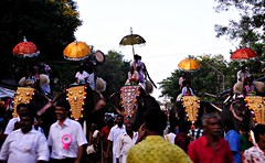 Celebration in Kerala Style...