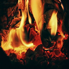 Fire (Tanjica Perovic) Tags: red hot home fire cozy fireplace warm glow flames warmth burning burn heat hearth glowing ember snug happynewyear combustion thermalenergy heatedwood yelloworangeandredlights