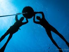 P1030737 (eputigna) Tags: ocean blue beach water mar fishing florida hunting palm atlantic freediving fl breathe pesca hold apnea spear spearfishing ocano speargun submarina subaquea