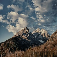 la Montagne Du Grand (Christopher DiNottia) Tags: park trees light wild sky cliff plants mountain color art nature ecology colors leaves rock stone forest canon woodland outside outdoors interesting intense woods scenery mood peace view good earth timber country hill grow environmental peak grand scene boulder brush ridge mount explore growth valley surprise summit vista environment remote tall growing wilderness quite tetons range powerful eco crevasse frontier precipice exciting backwoods amaze crag godly tallness