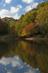 Autumn Pond (ogr) Tags: japan landscape 50mm contax planar carlzeiss eos5d zeiss50mmf14 planart1450 lightroom3 gettyimagesjapan12q1