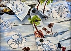 Hibiscus (Bamagirl7) Tags: hibiscus palmtree hawaiianshirt pineappleexpress yip vintageshirt 365project 365community msh0112 msh011211