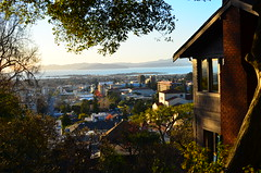 A City Through the Canopy (calebcarson) Tags: california from ca blue sunset sky sun set stairs golden bay berkeley memorial gate san francisco university stadium campanile cal area behind uc