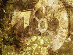 wheel (Daniella Keen) Tags: flowers white black nature leaves wheel sepia river landscape mushrooms scenery natural roots stems multiple dried exposed driedflowers layered rusing rustig multipleexposed poleroid naturistic