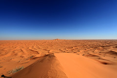 Desert land (Mansour Al-Fayez) Tags: trip travel wallpaper tree beautiful beauty smile wonderful photography amazing nice interesting desert action awesome explore national saudi land saudiarabia geographic ksa mansour    flickraward