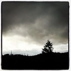 Grey skies, Corstorphine Hill, Edinburgh #cloud