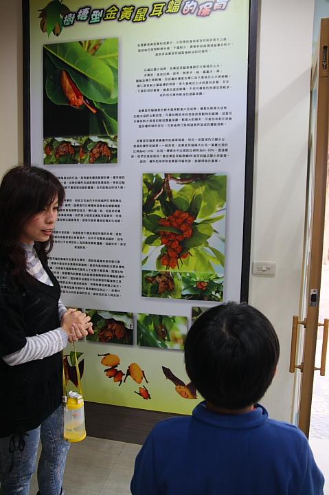 雲林水林黃金蝙蝠生態館(誠正國小)0005