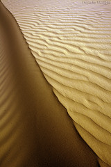Sandy Abstraction - Explore (TARIQ-M) Tags: shadow abstract art texture landscape sand waves pattern desert patterns dunes wave abstraction riyadh saudiarabia hdr   canoneos5d            ef1635mmf28liiusm canoneos5dmarkii        ripplesripple