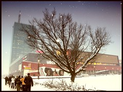 WINTER SALE (lumachroma) Tags: winter sky people snow tree ice shopping europe sony serbia belgrade usce centar