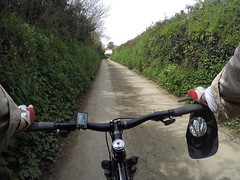 G0101888a (Photopedaler) Tags: rural countryside pov hedges countrylanes bicycleriding gopro cornishcycling