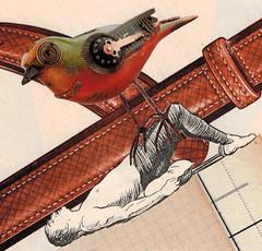 May 7/8th los dias contados (kurberry) Tags: bird collage cutpaste mechanicalbird vintageephemera collageaday losdiascontados analoguecollage