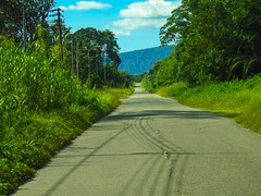 DSCN0782 (vhenryz) Tags: road park trip trees sky cloud nature water clouds forest river reserve national jungle brunei ulu temburong