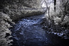 Minnehaha Creek IR (Fritillaria1) Tags: water minnesota creek river ir minneapolis infrared minnehaha