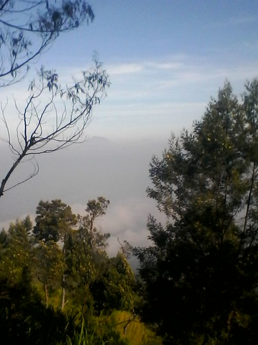 "Pengembaraan Sakuntala ank 26 Merbabu & Merapi 2014 • <a style=""font-size:0.8em;"" href=""http://www.flickr.com/photos/24767572@N00/26888432200/"" target=""_blank"">View on Flickr</a>"